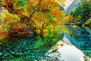 Картинка Китай Парк Река Осенние Цзючжайгоу парк Деревья Valley Природа