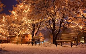 Обои Новый год Праздники Зима Парки Скамейка Снег Деревья Гирлянда Ночь Природа Города фото