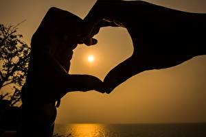 Фотография Пальцы Сердце Руки Силуэт