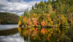 Фотография США Озеро Леса Осень Lake Logan Haywood County North Carolina Природа