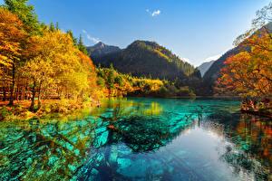 Фотография Китай Цзючжайгоу парк Парк Речка Осенние Горы Valley Природа