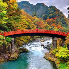 Фотография Япония Парки Речка Мосты Лес Гора Осень Shinkyo Bridge Nikko Природа