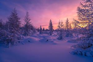 Картинка Рассветы и закаты