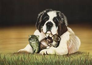 Фотографии Собаки Кошки Рисованные Сенбернар Траве Котята Животные