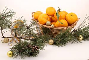 Обои Новый год Мандарины Белый фон Ветки Шарики Корзинка Шишки Еда фото
