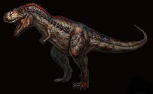 Фото Древние животные Динозавры Тираннозавр рекс Черный фон Животные