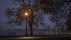 Картинка США Парки Озеро Осень Уличные фонари Ночь Деревья Скамья Denver Colorado