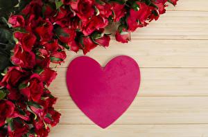 Фотография Розы Доски Сердце Бордовый Цветы