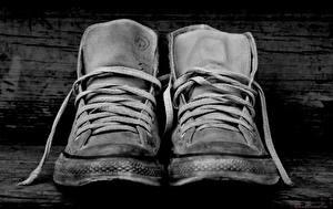 Картинки Крупным планом Кеды Черно белое Шнурки Converse