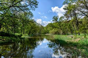 Картинки Украина Речка Деревья Sumy Oblast Trostianets Природа