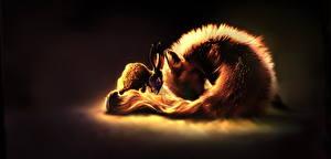 Картинка Лисы Зайцы Рисованные Две Животные