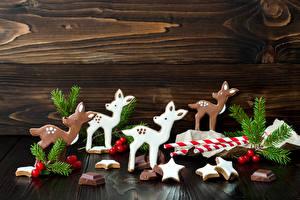 Фото Новый год Печенье Олени Шоколад Дизайн Ветки Еда