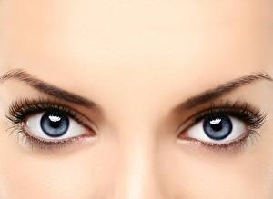 Обои Глаза Крупным планом Ресница Девушки