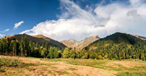 Фотографии Горы Лес Облако Abkhazia Природа