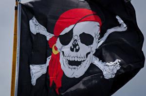 Обои Пираты Черепа Флаг Повязка на глаз Зубы фото
