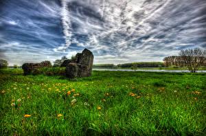 Обои Луга Небо Одуванчики Трава HDR Облака Природа фото