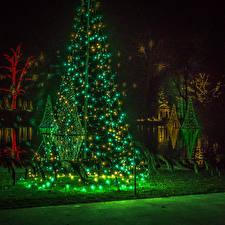 Обои США Парки Новый год Елка Гирлянда Пенсильвания Ночь Longwood Gardens Природа фото