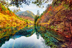 Фотографии Цзючжайгоу парк Китай Парки Осень Река Лес Пейзаж Природа