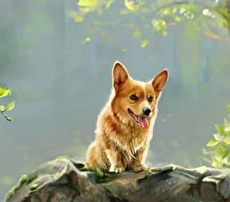 Обои Собаки Рисованные Вельш-корги Животные