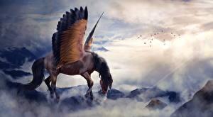 Обои Пегас Лошади Крылья Туман Фэнтези фото