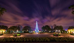 Фотографии Штаты Диснейленд Парки Рождество Калифорния Анахайм Новогодняя ёлка Ночь Уличные фонари Природа