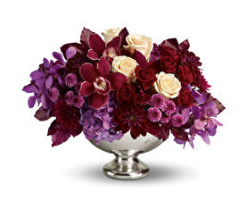 Обои Букеты Орхидеи Розы Хризантемы Белый фон Ваза Цветы фото