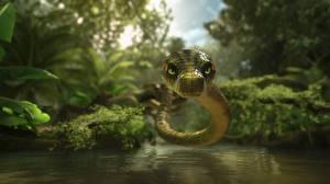 Картинка Змеи