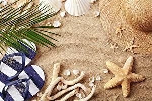 Обои Морские звезды Ракушки Лето Песок Шляпа Вьетнамки фото