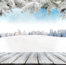 Фотографии Зима Снегу Доски Ветка Шаблон поздравительной открытки Природа