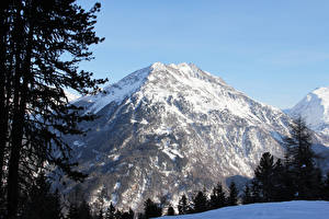 Фотографии Австрия Горы Зима Альп Снег Ель Природа