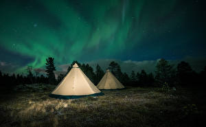 Обои Финляндия Небо Лапландия область Полярное сияние Ель Палатка Природа
