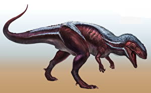 Картинка Древние животные Динозавры Megalosaurus Животные