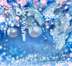 Фотографии Новый год Ветки Шар Снег Ленточка