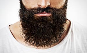 Фотография Крупным планом Мужчины Борода