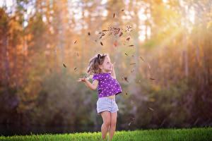Фотографии Осень Девочки Листва Счастье Ребёнок