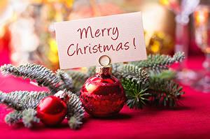 Фотография Праздники Рождество Ветки Шар Английский