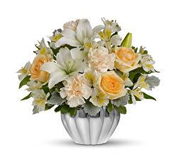 Фотографии Букеты Розы Гвоздики Альстрёмерия Лилии Белый фон Ваза Цветы