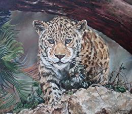 Обои Большие кошки Леопарды Рисованные Взгляд Животные фото