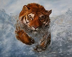 Обои Большие кошки Тигры Рисованные Вода Бег Взгляд Брызги Животные фото