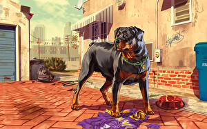 Обои GTA 5 Собаки Ротвейлер Chop Игры фото