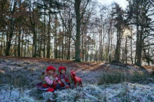 Обои Германия Парки Олени Зима Кукла Девочки Деревья Grugapark Esse Природа фото