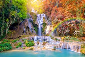 Обои Тропики Водопады Осень Деревья Радуга Tat Kuang Si Waterfalls Laos Природа фото