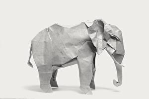 Фото Слоны Белый фон Оригами Бумага