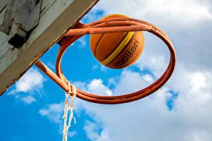 Обои Баскетбол Небо Мяч Спорт