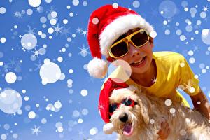 Новый год Собаки Мальтезе Мальчики Шапки Очки Снежинки Болоньез Дети