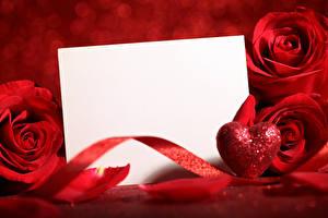 Обои Розы Шаблон поздравительной открытки Лента Красный Цветы фото