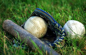 Обои Мяч Бейсбольная бита Трава Спорт фото