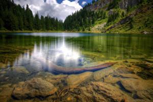 Обои Озеро Камни Леса Вода Пейзаж Отражение Kosovo Природа фото