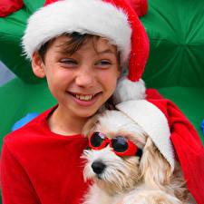 Новый год Собаки Мальтезе Мальчики Улыбка Болоньез Очки Шапки Дети