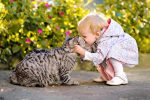 Обои Кошки Двое Девочки Дети фото